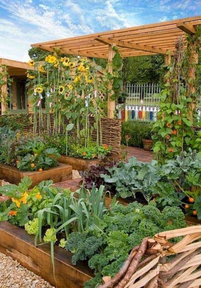 45 Affordable Diy Design Ideas For A Vegetable Garden My Desired Home Garden Layout Backyard Vegetable Gardens Vertical Vegetable Gardens