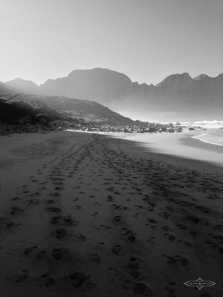 PORTFOLIO / The Lion & The Lady / photography / landscape / South Africa