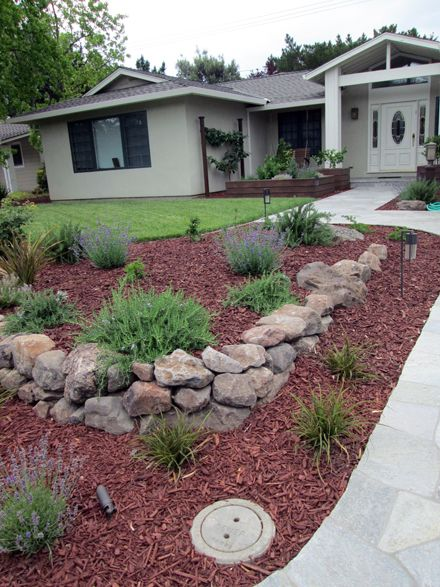 17 best Drought Tolerant Landscapes images on Pinterest Garden - drought tolerant garden designs