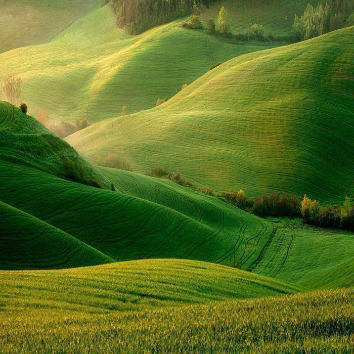 Los campos verdes laderas, Torre A Castello, Italia.