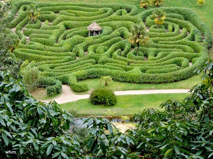 Glendurgan gardens are simply magical. The Laurel Maze is spectacular.