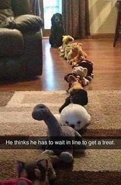Funny Snapchats: Waiting for A Treat