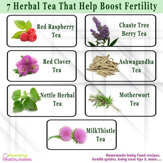 The organic sources ensure that the teas are free from any sort of harmful chemicals which might harm your body. For that reason herbal tea not only helps you boost your fertility but also helps you to stay safe from damage. This is a list of seven herbal teas which will help you boost your fertility!!