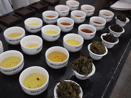 安徽農業大学での評茶講義