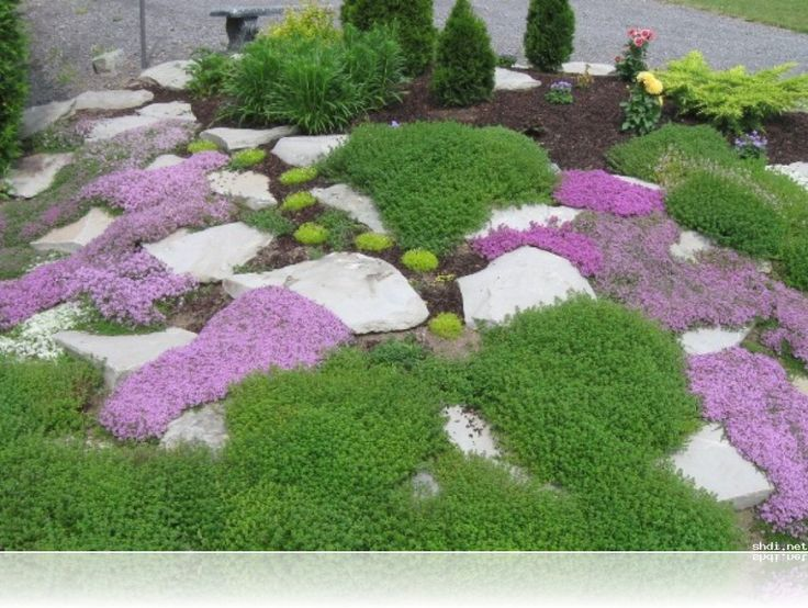 Best 20 Rock Garden Borders Ideas On Pinterest Landscaping - cutting edge garden design worcester