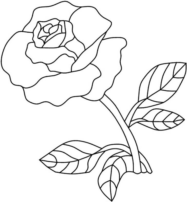 Best 25 red rose pictures ideas on pinterest red rose drawing stainedglasspatternsflowers single red rose painting on glass ccuart Image collections