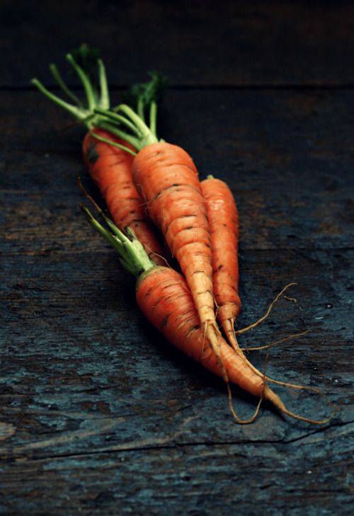 Carrots (by Piccola Mela)