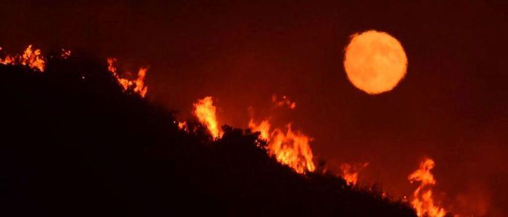 InfoNavWeb                       Informação, Notícias,Videos, Diversão, Games e Tecnologia.  : Incêncio evacua dezenas de casas na Califórnia
