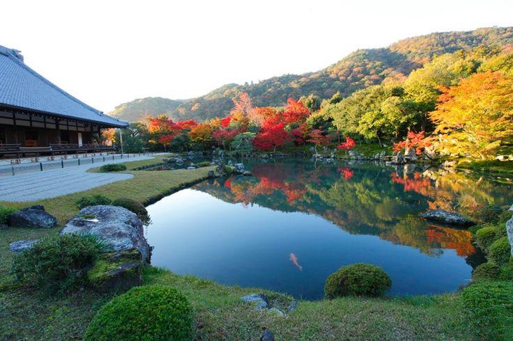観光都市京都の一番の見所はやはり神社・仏閣です。春は桜、夏に新緑、秋の紅葉に冬の雪と季節によっても荘厳な神社・仏閣は異なった表情を見せてくれます。そんな京都の神社・仏閣の数は京都市だけでも2,000以上あると言われています。全てを訪れるのは困難なほどの膨大な数に加え、シーズン中は混雑でバスなどの公共交通機関が予定通りに進まず、思い通りの京都観光ができないことが多々あります。  そこで今回は数ある神社・仏閣の中でも絶対に外せない名所をエリアごとに紹介したいと思います。エリアごとに分かれている為、効率よく多くの神社・仏閣を参拝することができます。京都を訪れる際はぜひ旅のプランの参考にしてみてください。
