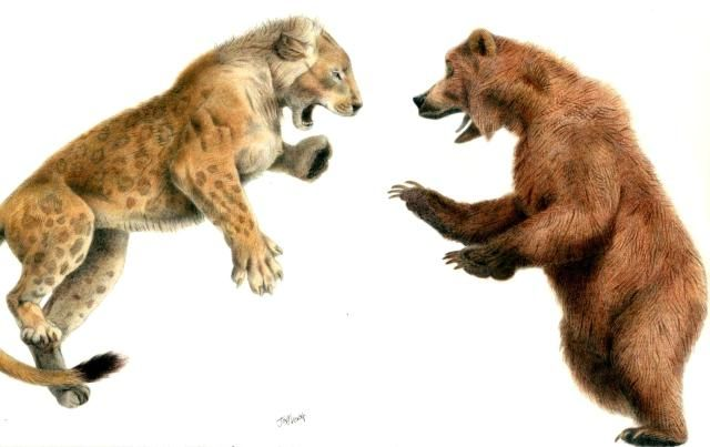 10 Prehistoric Battles That Could (and Probably Did) Happen: The Cave Bear vs. the Cave Lion