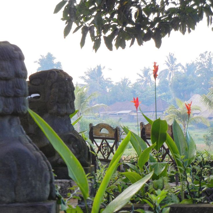 Bali gardens are truly enchanting. This stunning garden is at Wapa di Ume in Ubud. Can you just smell the wood fire smoke in the air!