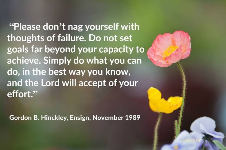 """Please don't nag yourself with thoughts of failure. Do not set goals far beyond your capacity to achieve. Simply do what you can do, in the best way you know, and the Lord will accept of your effort.""   ~Gordon B. Hinckley"