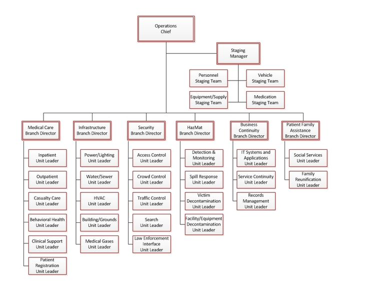Windows media player 12 portable free download tiluni Pinterest - hospital organizational chart