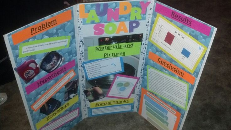 Which Laundry Detergent Works Best for a Science Fair Project?