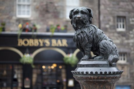 ~ Greyfriars Bobby ~ the name of this wee dog, was memorialized after legend says he guarded his former owner's grave for fourteen years until the terrier himself passed away in 1872 ~ Edinburgh ~ Scotland ~