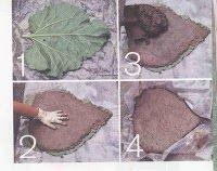 How To Make Rhubarb Leaf Stepping Stones