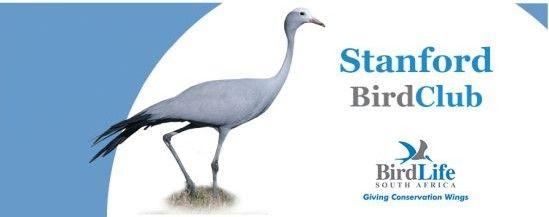 Stanford Bird Fair 1 - 6 October 2013