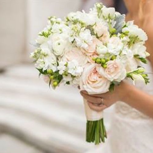 erin held a textured feminine bouquet that included blush garden roses dusty miller hypericum berries and ranunculus