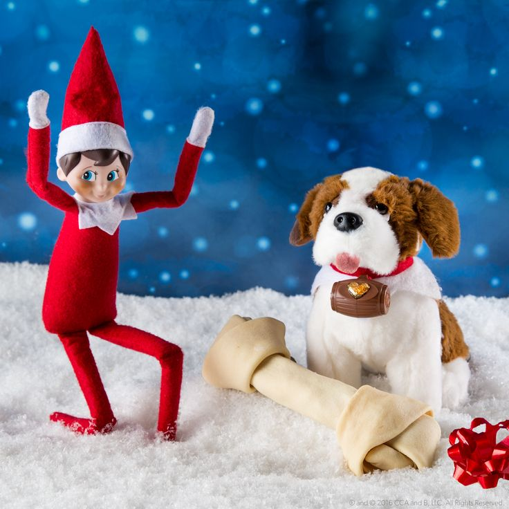 Man's best friend is also an elf's best friend! Meet the Elf Pets Saint Bernard, sent from the North Pole to spread Christmas cheer! This heartwarming tale encourages children to perform acts of kindness with their Saint Bernard pups at their side. Learn more at ElfontheShelf.com! | Elf on the Shelf Ideas | Christmas 2016