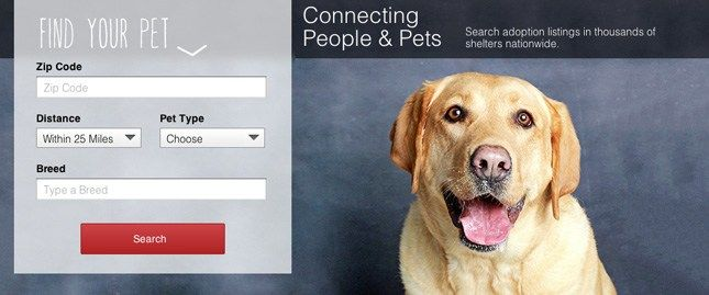 Launches Pet Adoption Website #dog #rescue #and #adoption http://pet.remmont.com/launches-pet-adoption-website-dog-rescue-and-adoption/  Overstock.com Launches Pet Adoption Website Twitter Print Email Necklaces, living room furniture and. adoptable pets? It's true — all these things are now available through Overstock.com . On Friday the online retail company known for selling surplus merchandise at discount prices launched a pet adoption section to help find homes for shelter animals. The…