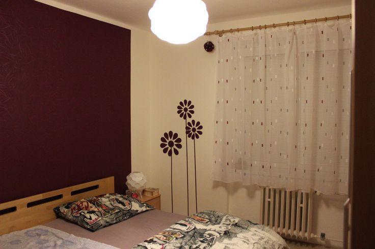 dekorace na zeď - kopretinky z tapety