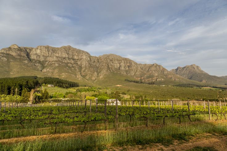 This timelapse of Stellenbosch Mountain consists of about 530 shots playing ...
