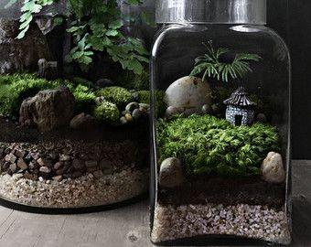 Easy Garden Landscape Terrarium Cube Apartment by DoodleBirdie