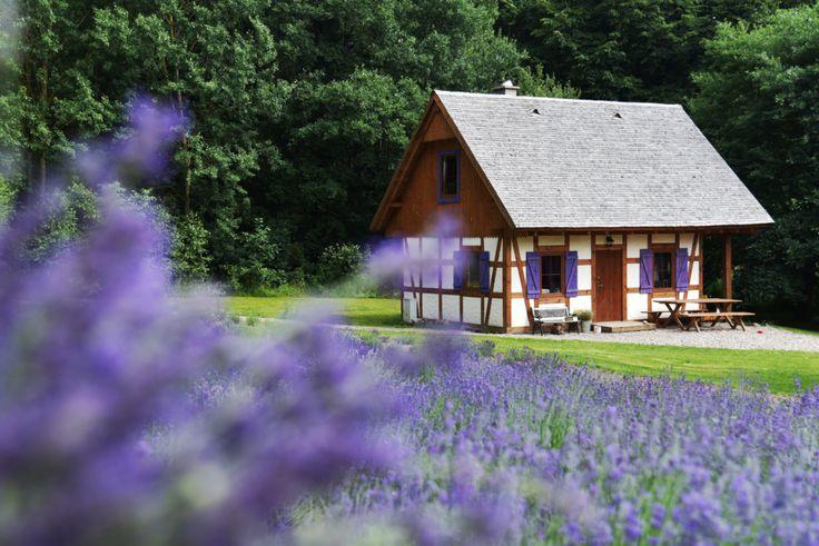 """Wydanie specjalne """"Werandy"""" - """"Weekend w Polsce"""" już od 30.03.2017 r. w kioskach!  http://www.weranda.pl/weekend-w-polsce/ #Weranda #lawenda #weekend #domek #dom #fioletowy #ogród #piękne #zieleń #rośliny #ogrody #trawa #ogrod #bez #kwiaty #podróże #wyjazdy #siedliska #pomysły #podróżowanie #wycieczki #hotele #pokoje #travel #Polska #Poland"""