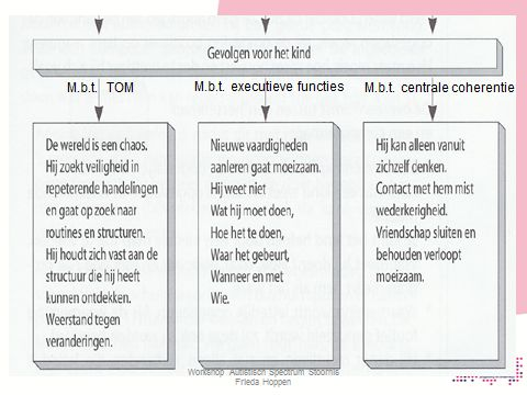 MBT Centrale Coherentie / Executieve Functies / Theory Of Mind
