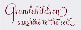 grandchildren,they are my sunshine...