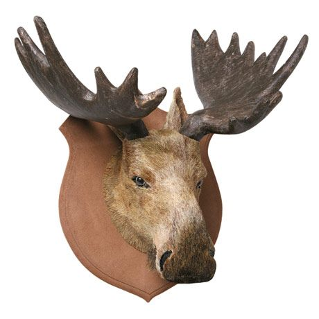 Faux animal head trophy moose i guess for 40 you can 39 t expect even close to life sized - Fake moose head ...