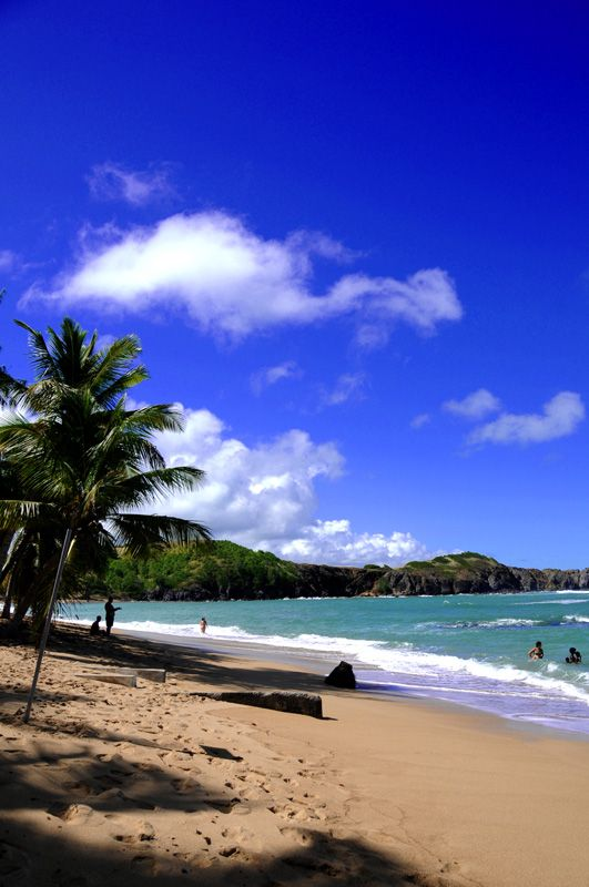 Trinité #Martinique