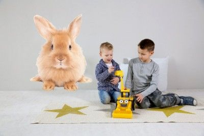 rabbit XXL bewerkt