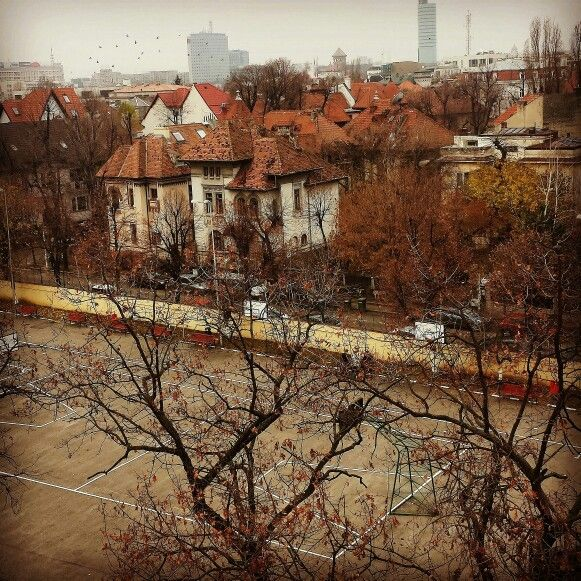 The yard of National College I.L.Caragiale Bucharest  #autumn #viewfromtheclass #architecture #shadesofbrown