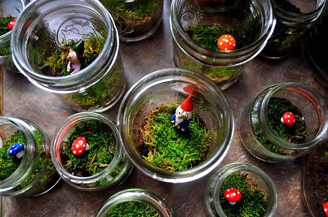 Spullen uit het bos verzamelen - glazen bak