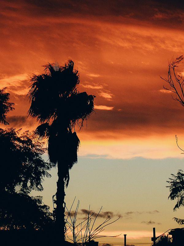 Lakemba/Belmore Sunset