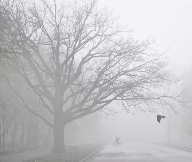 10 idées pour chasser la grisaille de novembre | Activités et loisirs des enfants | Yoopa.ca