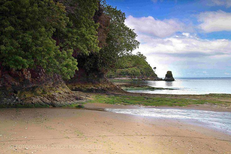 My private own paradise - Peninsula de Lacuy (Isla de Chiloe)