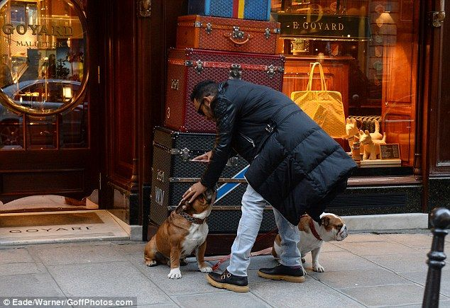 Good boy! Lewis was seen petting one of his companions following the impromptu shoot