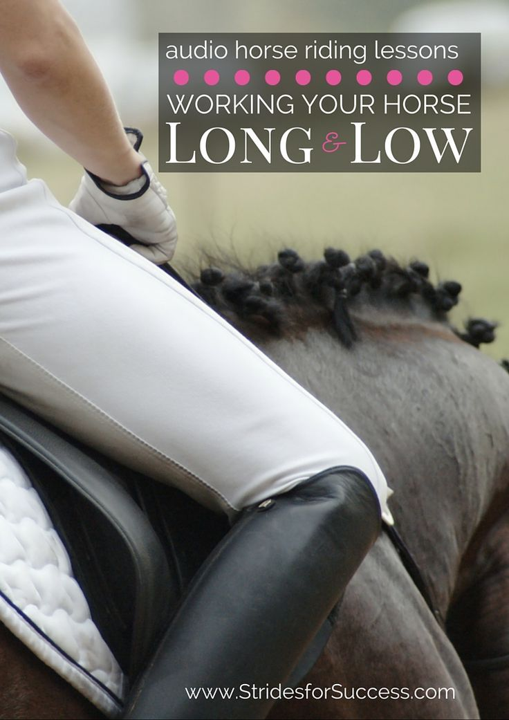 Working your horse long and low is a great exercise for both warming up & cooling down & it will increase your horse's suppleness & elasticity if ridden correctly.  There are some tips and exercise as well as the podcast episode for this over at the blog