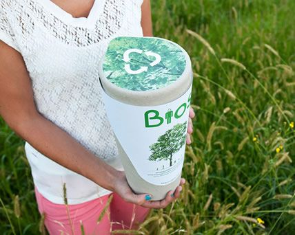 Biodegradable Urns That Will Turn You Into A Tree After You Die - Let's Start Converting Cemeteries Into Forests