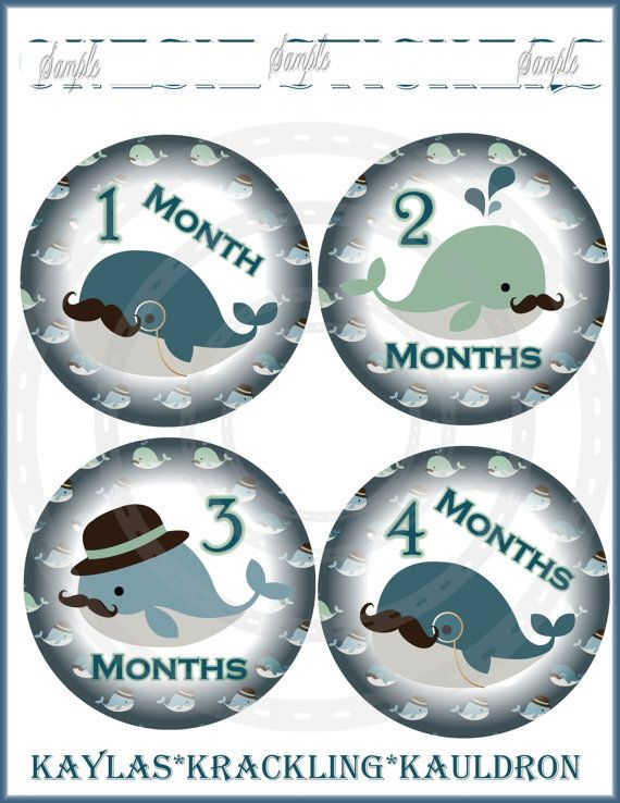 Monthly Baby Onepiece Sticker 13 Mustache Whales Monthly  Stickers