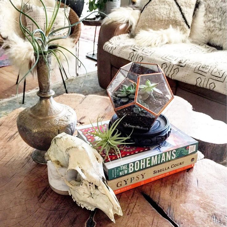 My plant loving friends!! I have been holding out on you. I've discovered some wonderful plant resources that I MUST share. If you've seen any of my scintillating stories (@ericareitman and @kismet_house I am NOT) you may have noticed my total adoration of my new airplants and glass terrariums. But for those of you with an actual life who are not that interested in my little insta stories I want to share an airplant source based in Torrance CA @rainforestflora and a handmade glass…