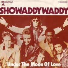 showaddywaddy ! Aww loved this when I was younger....still do x