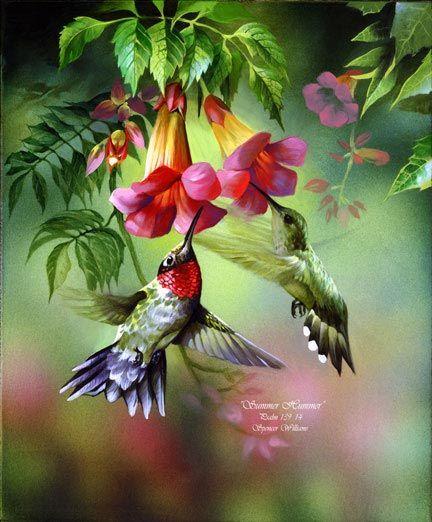 Summer Hummingbirds Painting | ~ Animal Paintings ~ Wildlife Art ~ Animal Paintings & Animal ...