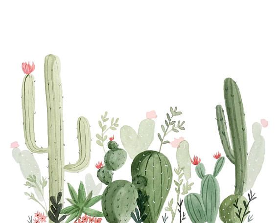 Watercolor Cactus And Succulents Collection With Stone In 2020