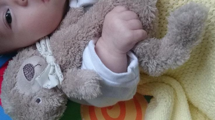 Please help I'm lost!! Small brown teddy bear comforter lost in Barnstaple town centre or Pilton Park on 2.10.16. One very upset Lilly trying to find him.