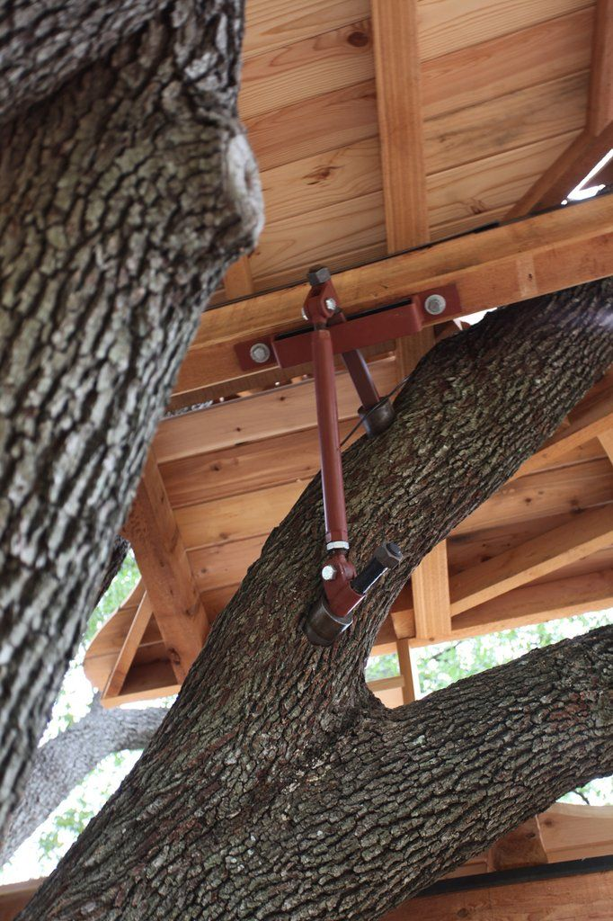 Strut Back Up System – Be in a Tree