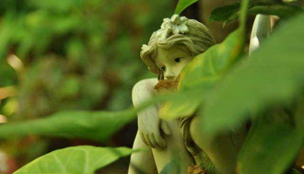 The Continent Sulina - Swellendam's faerie sanctuary