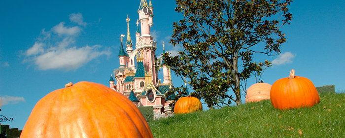 Travel by Bus from CDG to Disneyland Paris Paris has three major airports, Charles de Gaulle , Orly airport and Beauvais airport. Over 120 million people travel through Paris airports each year.  also availble private coach service between CDG Airport to Disneyland Paris. http://www.parisdisneyland.transfer-private.com/